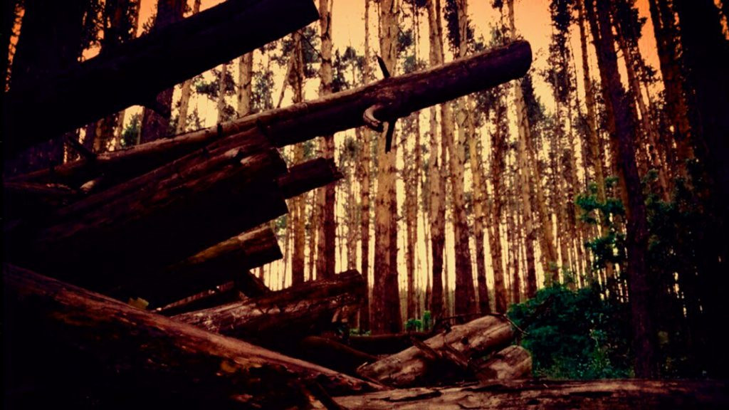 Hellendorff_wood